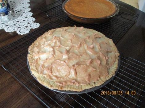 メレンゲバイとパンプキンケーキ