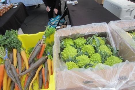 こんな珍しい野菜も。左はいろいろな色の人参。右は、カリフラワーとブロッコリーを掛け合わせた野菜です。