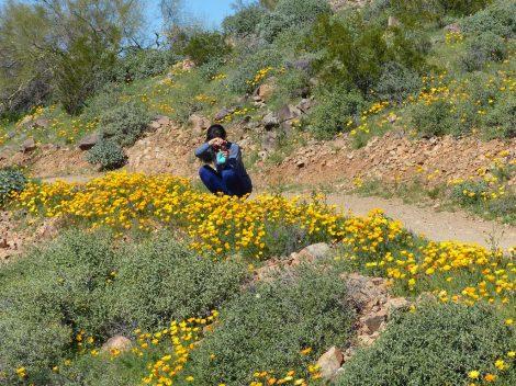 娘の遺品のカメラを手にヨガパンツのまま花の写真をとるKikiです。