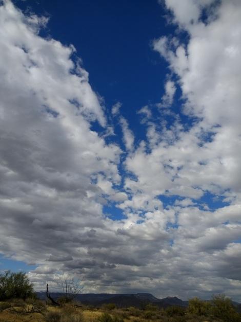 フェニックスの青空
